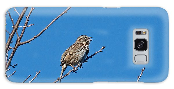 Song Sparrow Galaxy Case by Michael Peychich