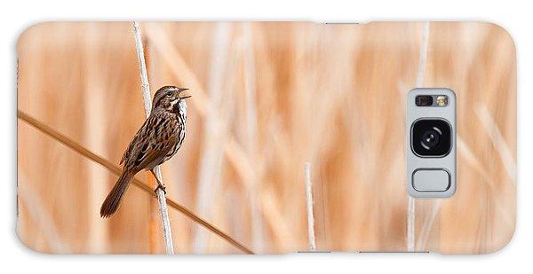 Song Sparrow Galaxy Case by Ram Vasudev