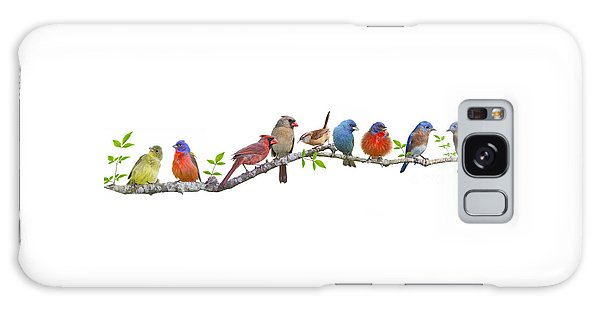Songbirds On A Leafy Branch Galaxy Case