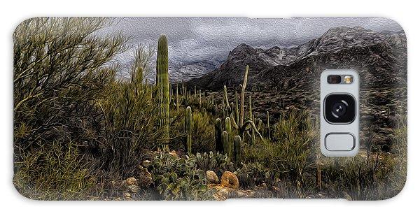 Sonoran Winter No.3 Galaxy Case