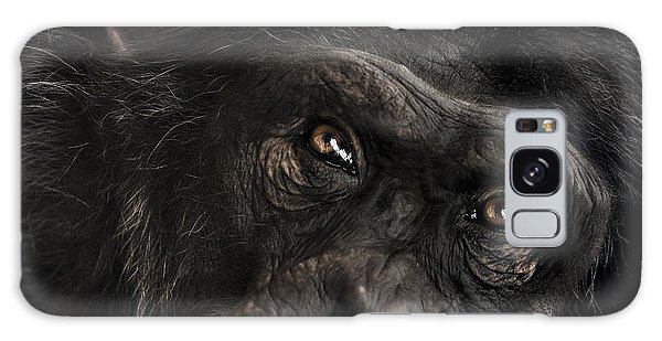 Chimpanzee Galaxy S8 Case - Sorrow by Paul Neville