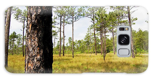 Southeast Pine Savanna Galaxy Case