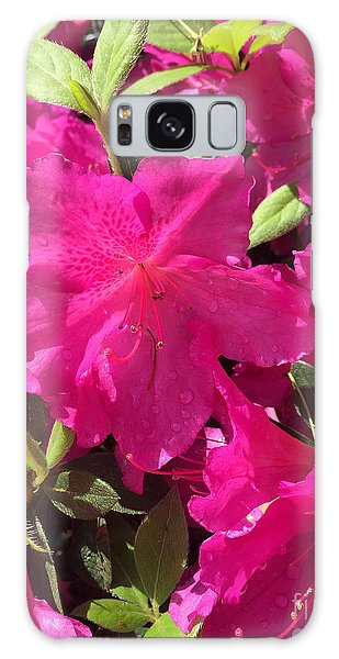 Southern Pink Galaxy Case