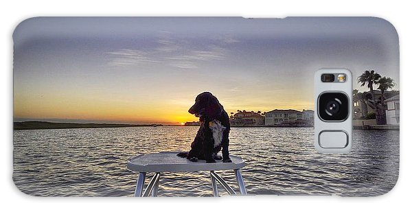 Spaniel At Sunset Galaxy Case