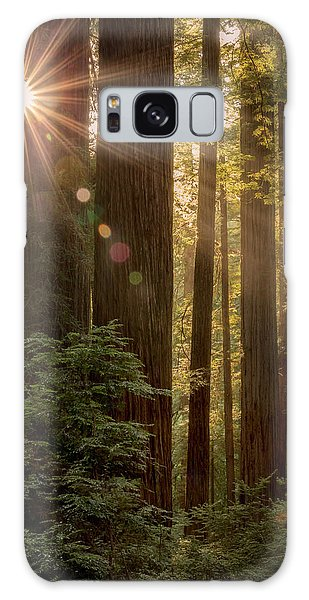 Sparkle In The Redwoods Galaxy Case