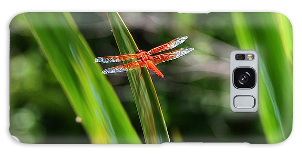 Sparkling Red Dragonfly Galaxy Case