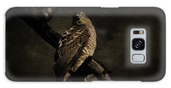 Sparrow Hawk Galaxy Case