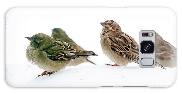 Sparrows In The Snow Galaxy Case