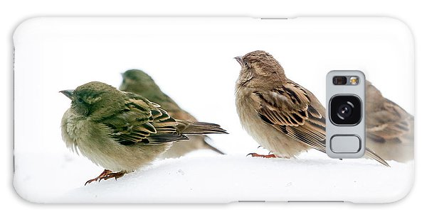 Sparrows In The Snow Galaxy Case