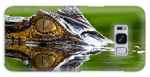 Spectacled Caiman Caiman Crocodilus Galaxy S8 Case