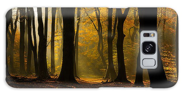 Tree Galaxy Case - Speulder Panorama by Martin Podt