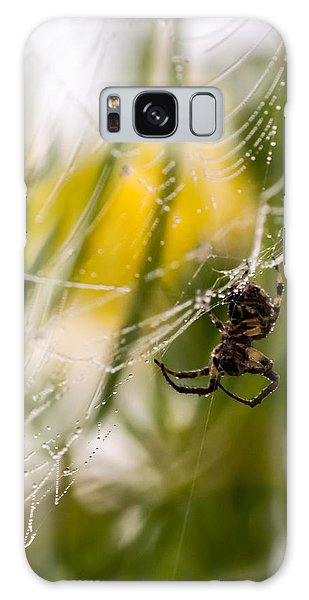 Spider And Spider Web With Dew Drops 04 Galaxy Case