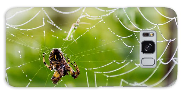 Spider And Spider Web With Dew Drops 05 Galaxy Case