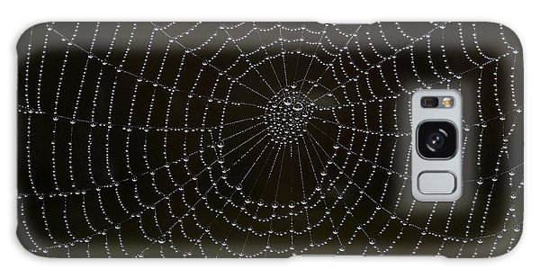 Spider Cobweb  Galaxy Case