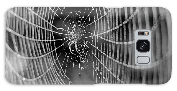 Spider In A Dew Covered Web - Black And White Galaxy Case