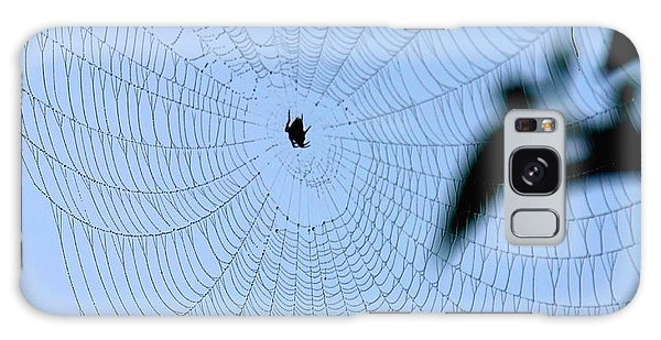 Spider In Web Galaxy Case