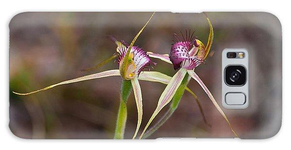 Spider Orchid Australia Galaxy Case
