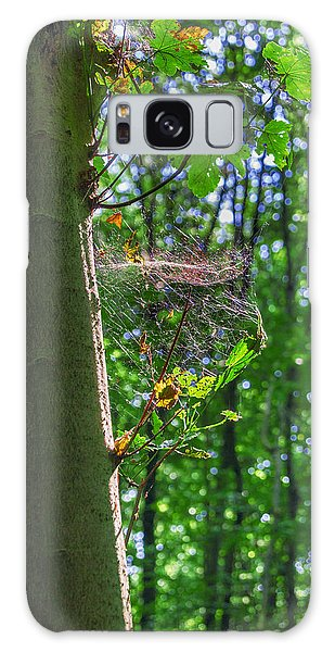 Spider Web In A Forest Galaxy Case