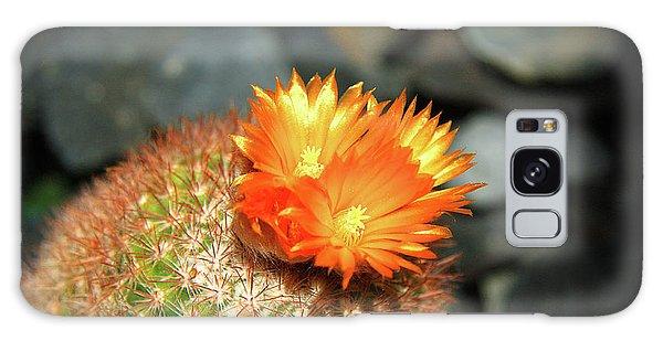 Spiky Little Cactus With Orange Flower Galaxy Case