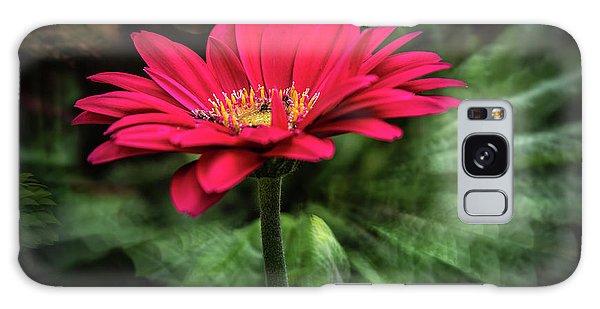 Spiral Pink Flower Focus Galaxy Case