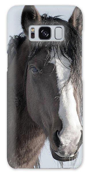 Spirit Horse Galaxy Case