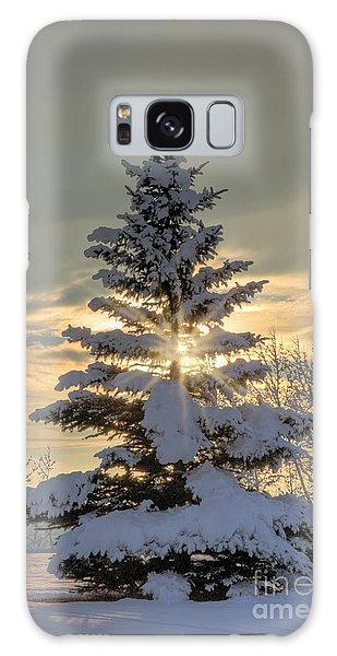 Spirit Tree Galaxy Case by Brad Allen Fine Art