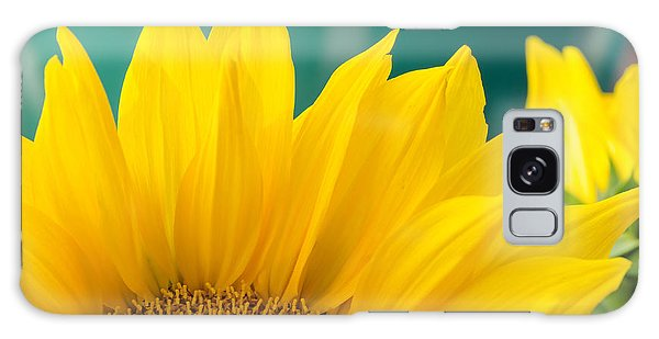 Splendid Sunflower Galaxy Case