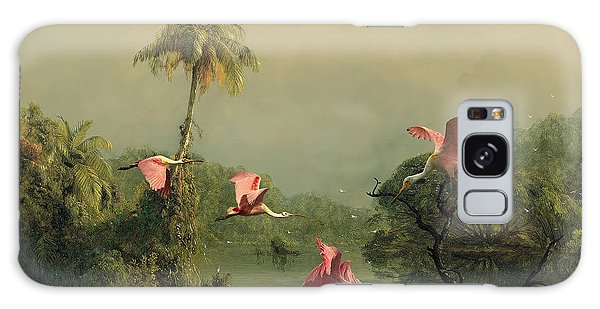 Spoonbills In The Mist Galaxy Case