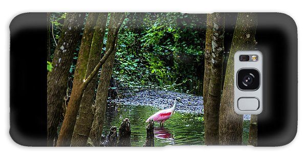 Egret Galaxy Case - Spooning by Marvin Spates