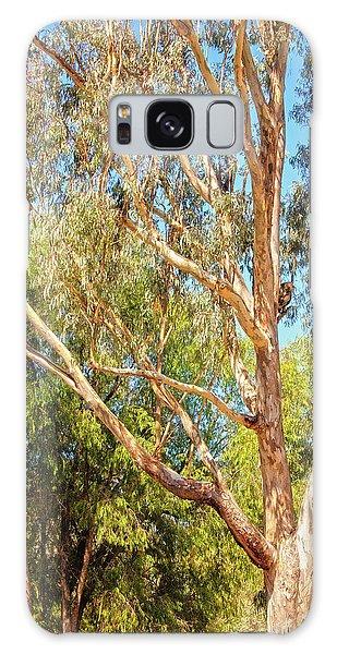 Spot The Koala, Yanchep National Park Galaxy Case