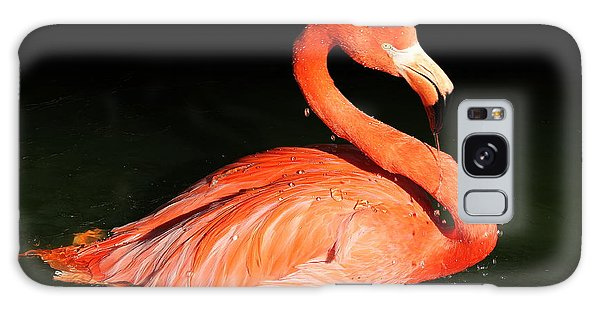 Spotlight On A Bathing Flamingo Galaxy Case