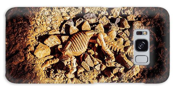 Bone Galaxy Case - Spotlight On A Extinct Stegosaurus by Jorgo Photography - Wall Art Gallery