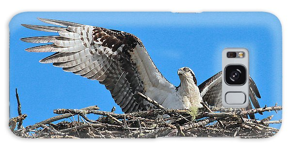 Galaxy Case featuring the photograph Spread-winged Osprey  by Debbie Stahre