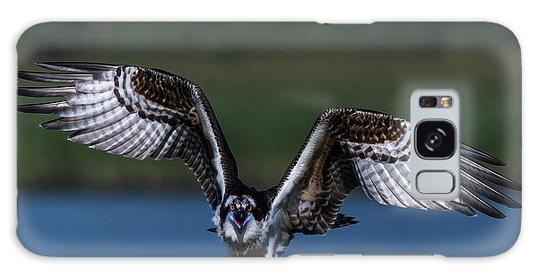 Galaxy Case featuring the photograph Spread Your Wings by Cindy Lark Hartman