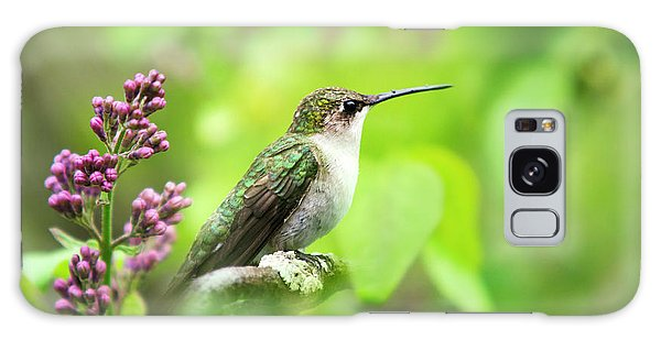 Galaxy Case featuring the photograph Spring Beauty Ruby Throat Hummingbird by Christina Rollo