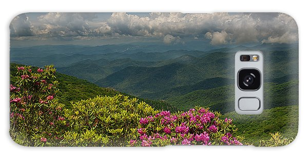 Spring Blooms On The Blue Ridge Parkway Galaxy Case
