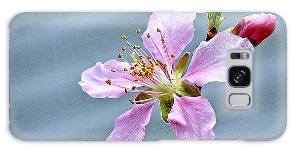 Spring Blossom Galaxy Case by Ludwig Keck