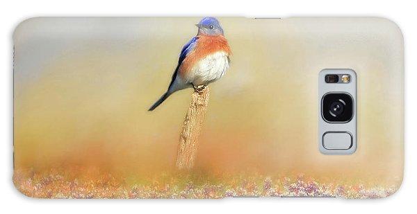 Eastern Bluebird Galaxy Case - Spring Bluebird by Donna Kennedy