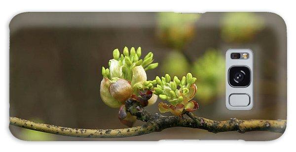 Spring Buds 9365 H_2 Galaxy Case