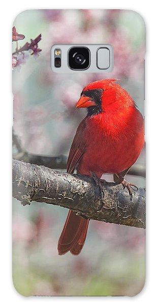 Spring Cardinal 2 Galaxy Case