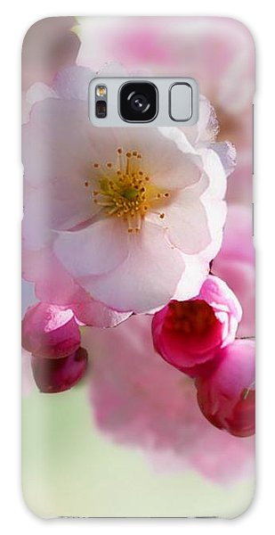 Spring Cherry Blossom Galaxy Case