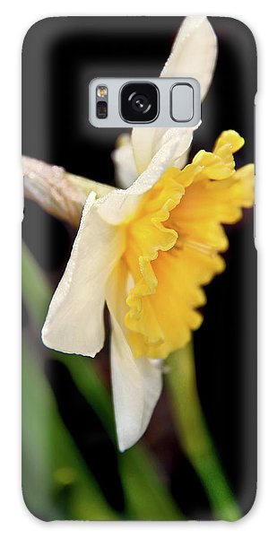 Galaxy Case featuring the photograph Spring Daffodil Flower by Jennie Marie Schell