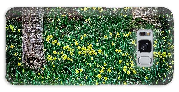 Spring Daffoldils Galaxy Case