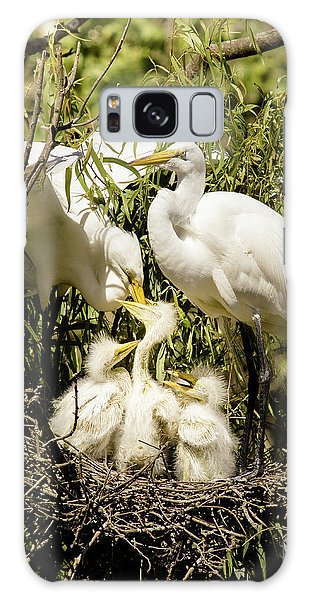Spring Egret Chicks Galaxy Case by Robert Frederick