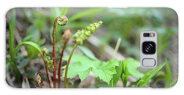 Spring Ferns Galaxy Case