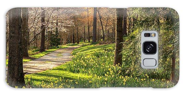 Spring Garden Path Galaxy Case