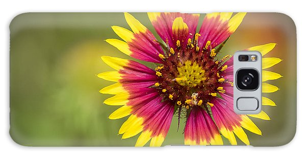 Spring Indian Blanket Galaxy Case