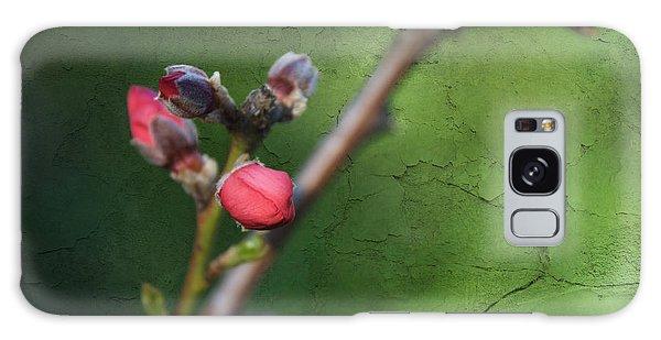 Spring Is Coming  Galaxy Case by Claudia Ellis