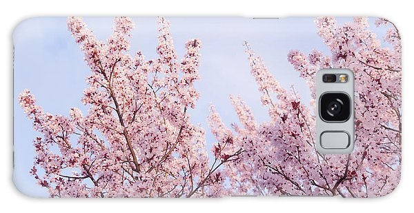 Galaxy Case featuring the photograph Spring Is In The Air by Ana V Ramirez
