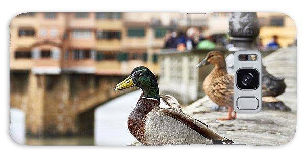 Spring Love Ducks Galaxy Case
